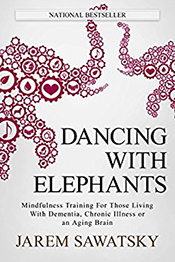DancingWithElephants