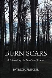 BurnScars